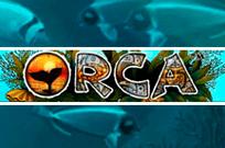 Orca слот без регистрации