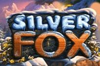 Silver Fox лучшие слоты