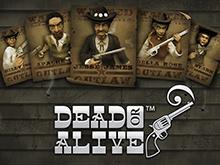 Dead Or Alive – играть онлайн в демо-версии